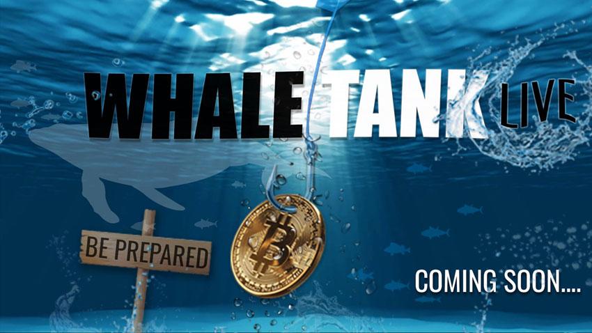 whale_tank_live